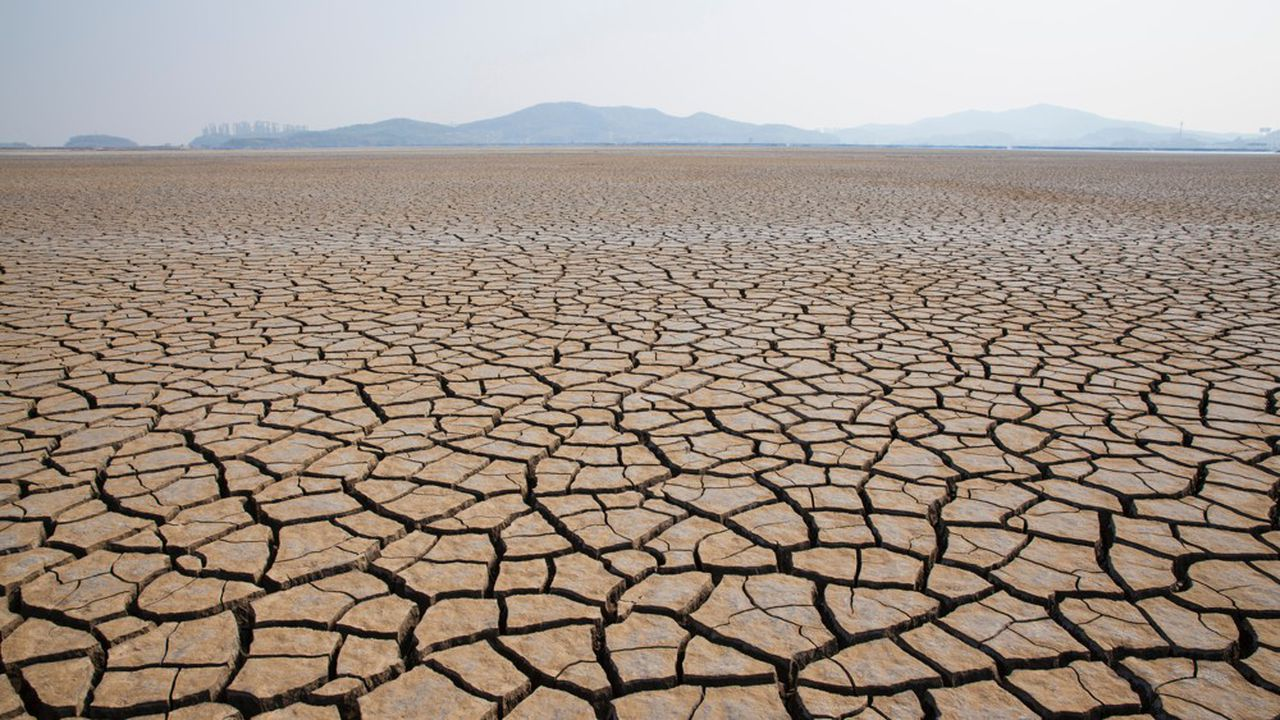 Quelque 17 pays, représentant près du quart de la population mondiale, sont exposés à un risque de «stress hydrique» extrême, selon le World Ressources Institute.