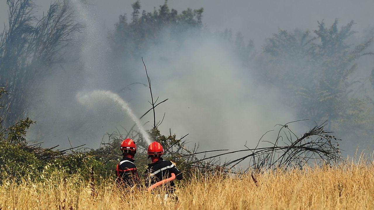 En 2019, 3.900hectares boisés ont brûlé lors de feux de forêts, contre19.700 en 2017.