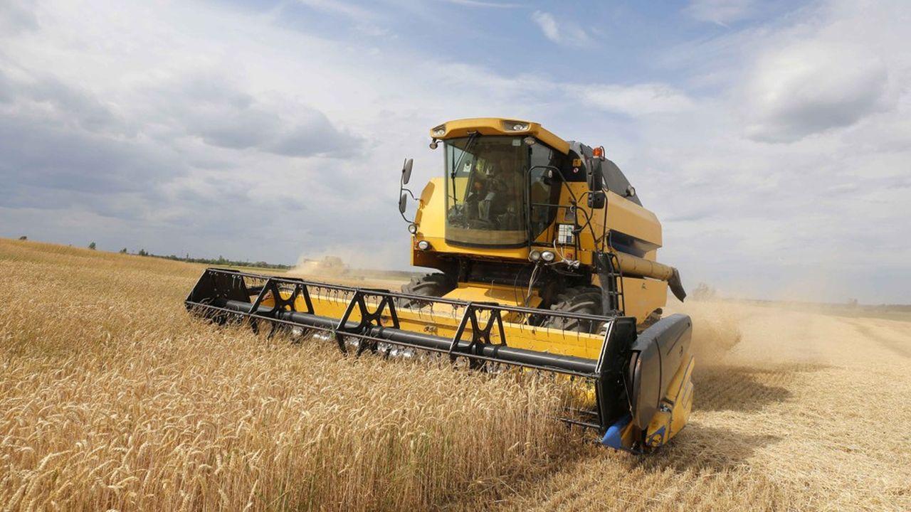 L'Ukraine est la première exportatrice d'huile de tournesol, la 4e pour le maïs et l'orge et la 6e pour le blé, alors qu'elle se classe 9eproductrice mondiale de blé (dur et tendre confondus).