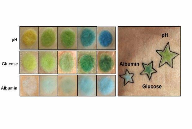 C'est le sang du patient qui fera varier la couleur des tatouages, qui pour le moment n'ont été réalisés que sur des parcelles de peau de porc.