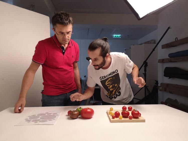 Jean-Marie Colomb et Jules Grandin en train de réaliser un graphique en tomates proportionnelles dans le studio photo des Echos