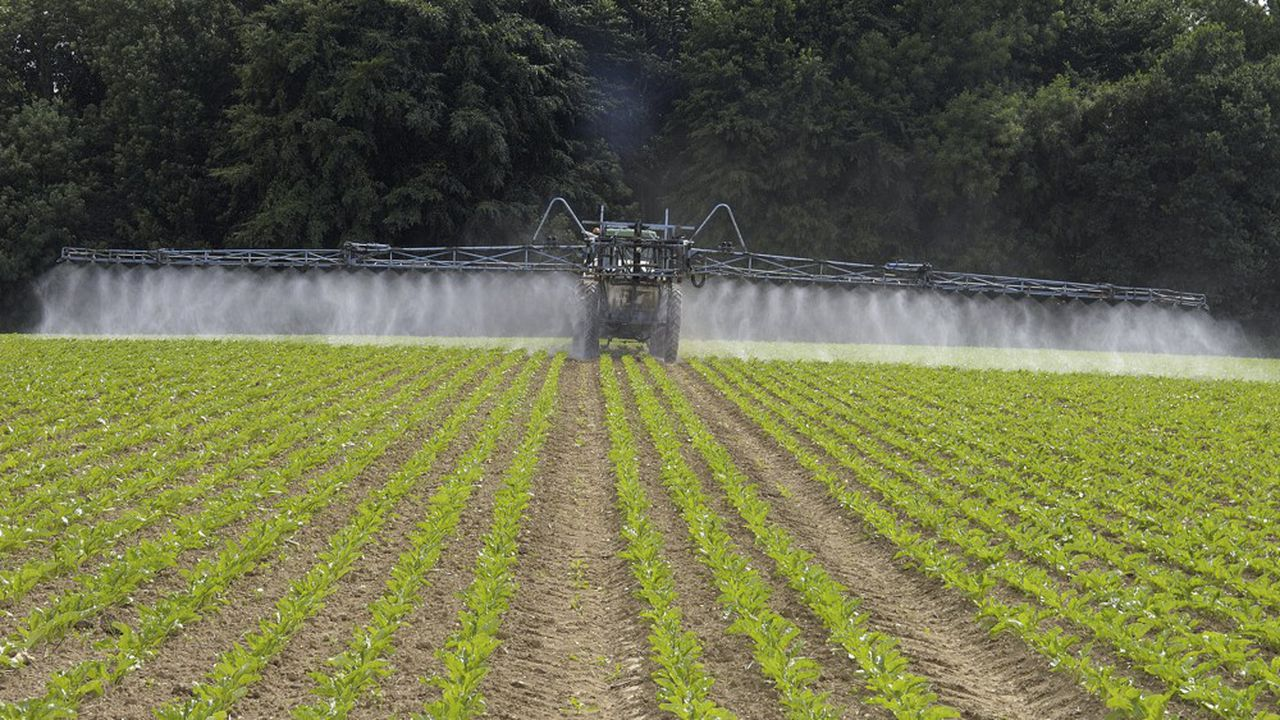 Les maires de plusieurs communes rurales au nom d'impératifs sanitaires ont décidé de n'autoriser l'épandage de pesticides qu'à bonne distance des habitations. Une initiative dont l'Etat conteste le fondement juridique.