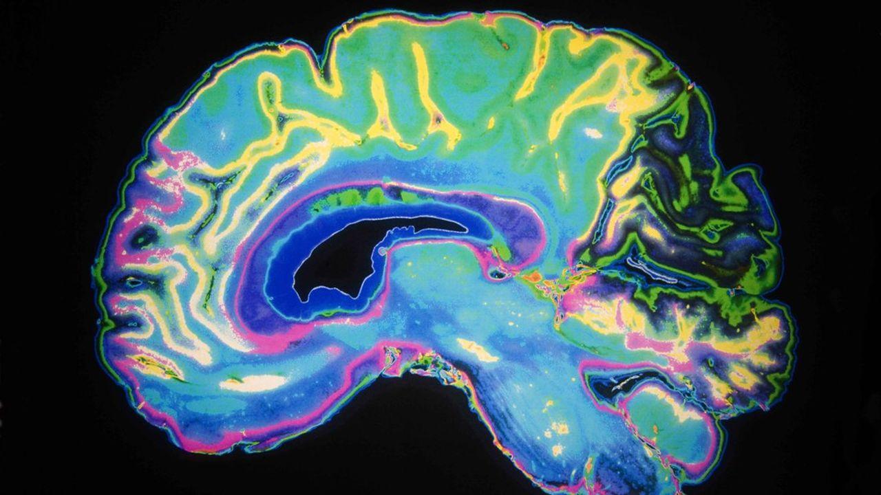 Une nouvelle génération de scientifiques tente d'aider les responsables politiques à concevoir leurs actions de façon plus efficace. Pour cela, ils ont recours aux sciences cognitives.