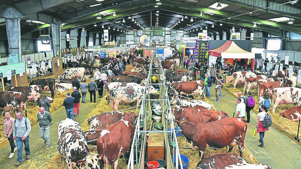 Au Salon des productions animales carrefour européen (Space) qui ouvre ses portes ce mardi au Parc-Expo de Rennes-Aéroport, de nombreux stands font référence au bio.