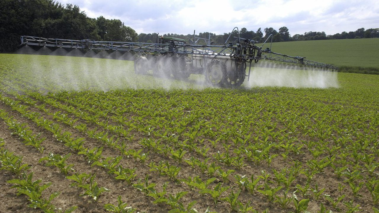 Les dossiers de réautorisation des pesticides et l'évaluation de ceux-ci ne font pas autant cas des études scientifiques qu'ils le devraient, selon l'ONG Générations Furtures.