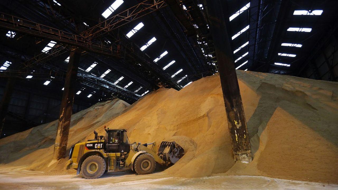 Du sucre de canne brut dans l'entrepôt d'une raffinerie