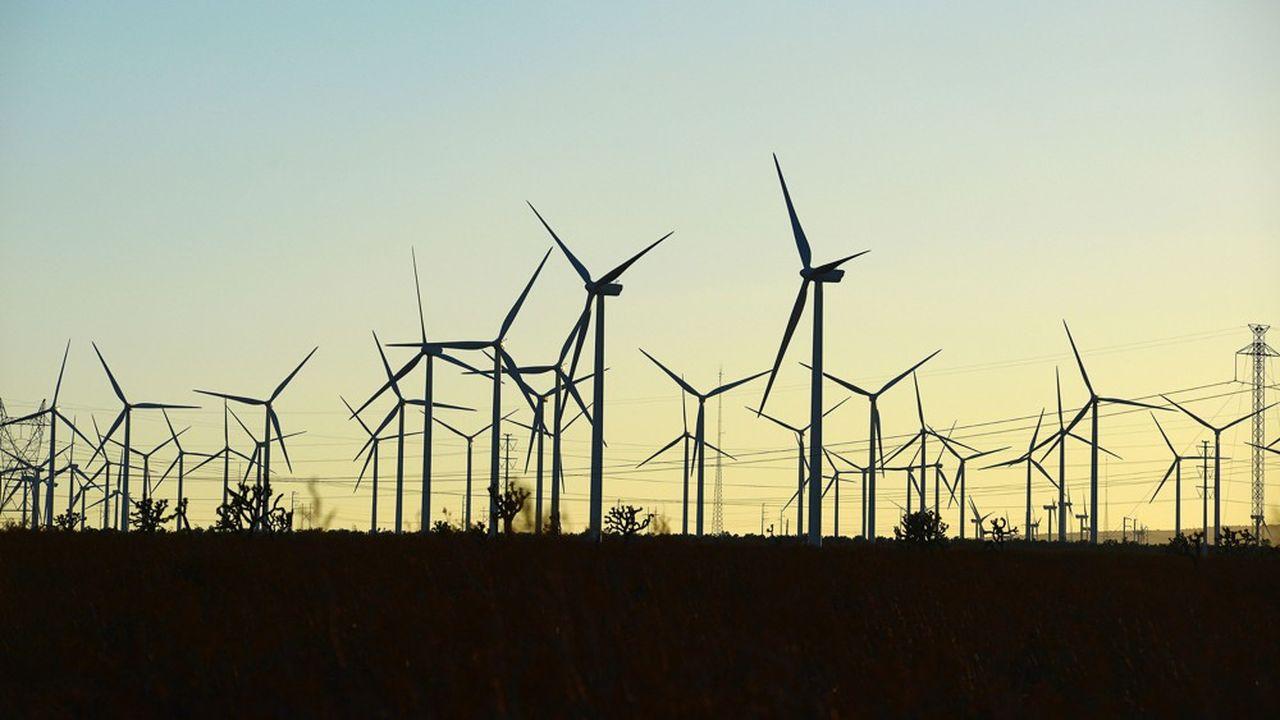 Une ferme d'éoliennes dans le désert californien (Etats-Unis).