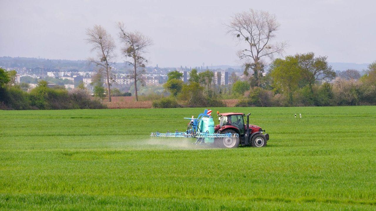 Au-delà du manque à gagner, le projet de décret sur des zones sans pesticides est vécu comme une «stigmatisation» ou une «injustice» par de nombreux agriculteurs.