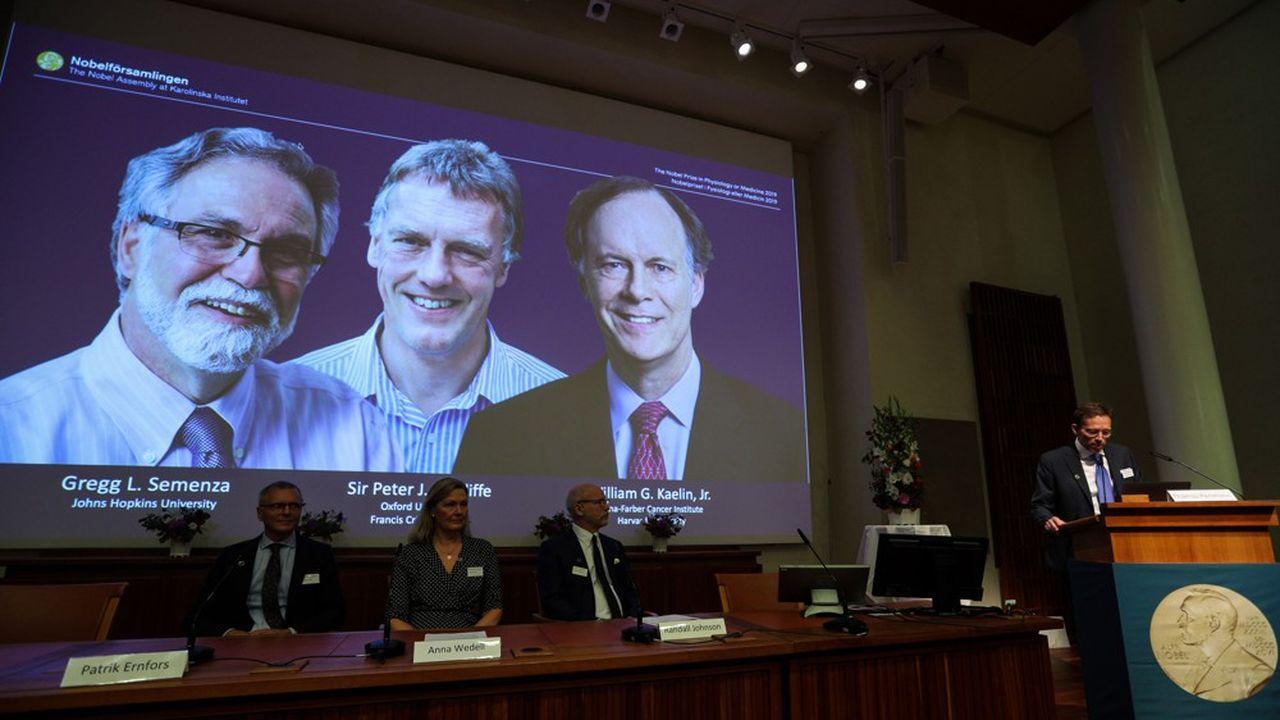 Le prix Nobel 2019 de médecine a été attribué aux professeurs Gregg Semenza, Peter Ratcliffe et William Kaelin.