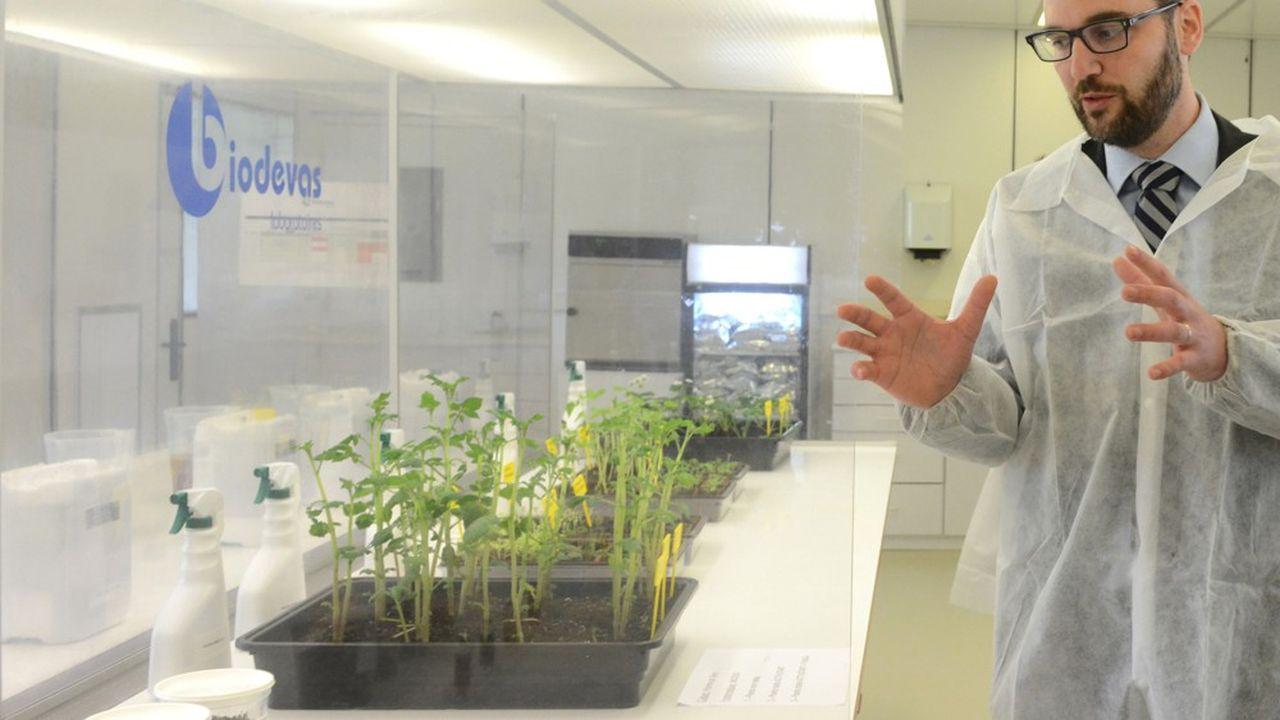 Le projet de Biovedas, présenté aux Trophées Or Normes, consiste à développer de nouveaux intrants alternatifs.