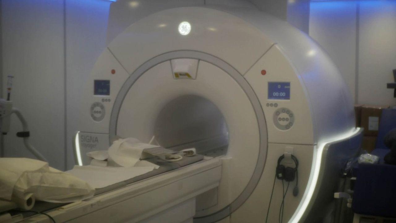 HawkCell veut sauver les animaux de laboratoire avec l'IRM vétérinaire