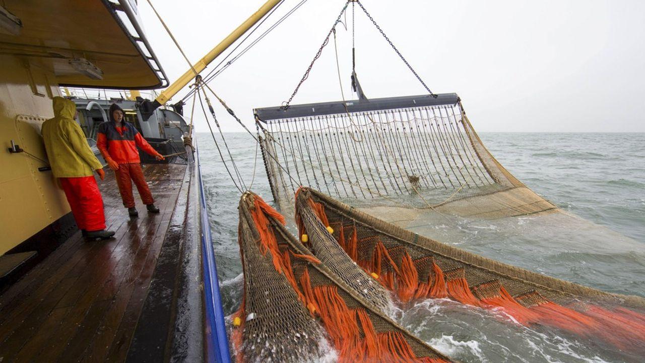 La pêche électrique est essentiellement pratiquée par les Néerlandais dont la flotte spécifiquement dédiée à cette pratique s'élève à 84 navires.