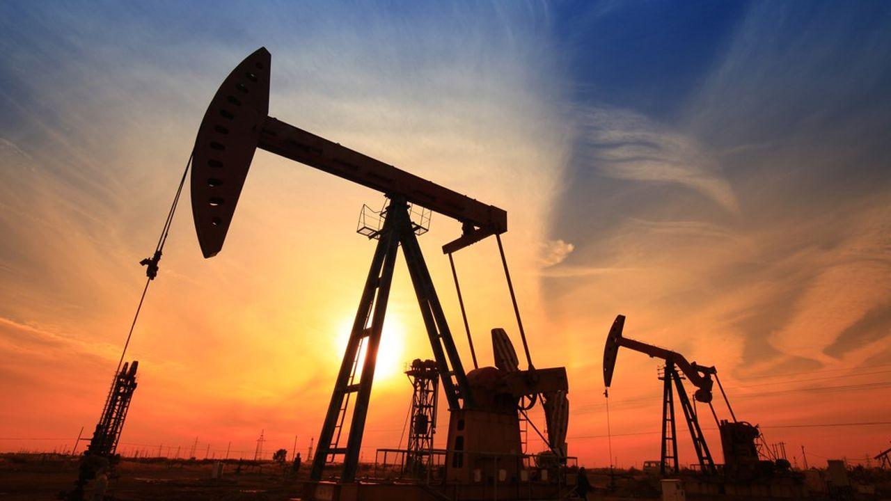 L'ONG Global Witness a chiffré à 5.000milliards de dollars les investissements à long terme des cinq majors du pétrole dans les énergies fossiles.