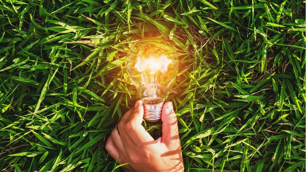 ENEDIS_TC_LESECHOS_Comment la loi énergie-climat veut favoriser les énergies renouvelables_CREDIT Shutterstock.jpg