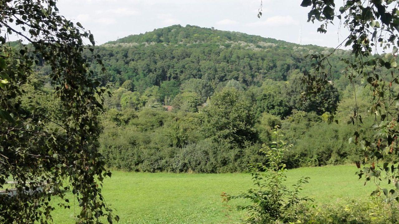 Le dossier des JO de 2024 place les épreuves de VTT sur le site de la colline d'Elancourt.