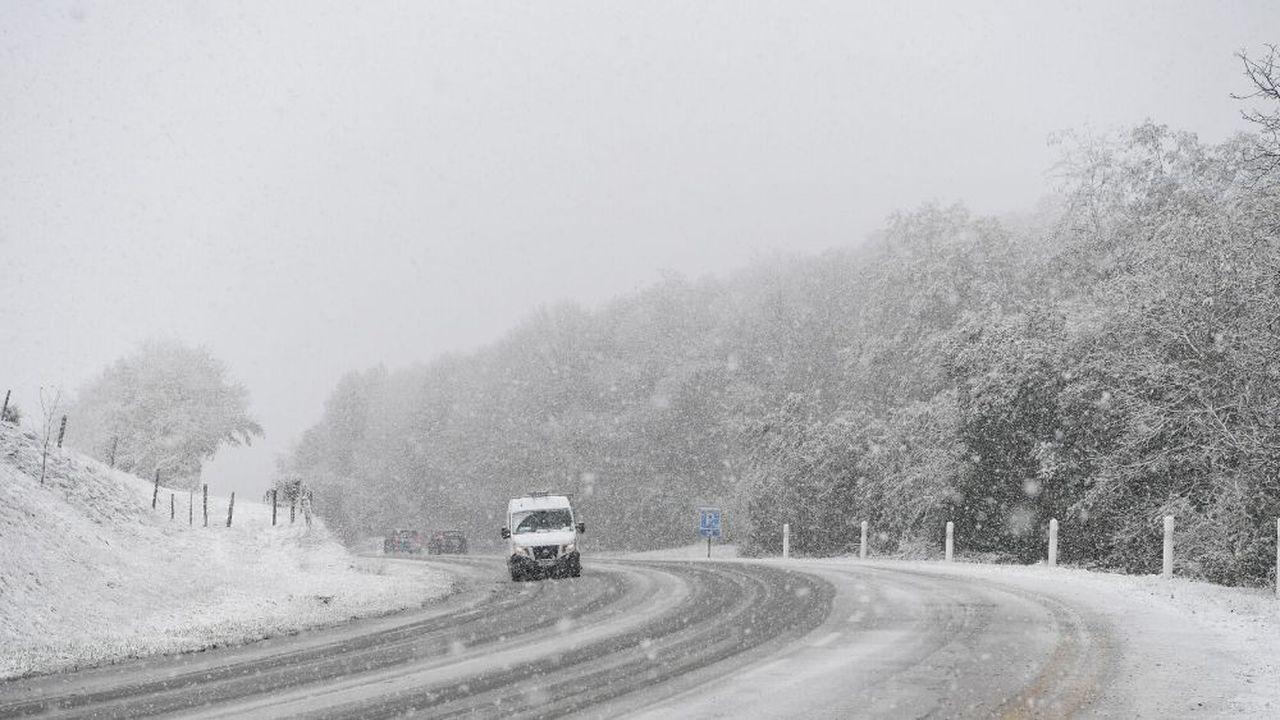 Un automobiliste est décédé dans la commune de Roche, en Isère, après la chute d'un arbre.