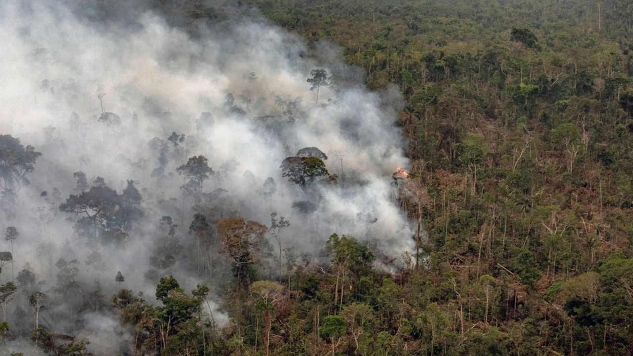 La fôret amazonienne en flamme, au Brésil, près de Porto Velho, en août dernier.