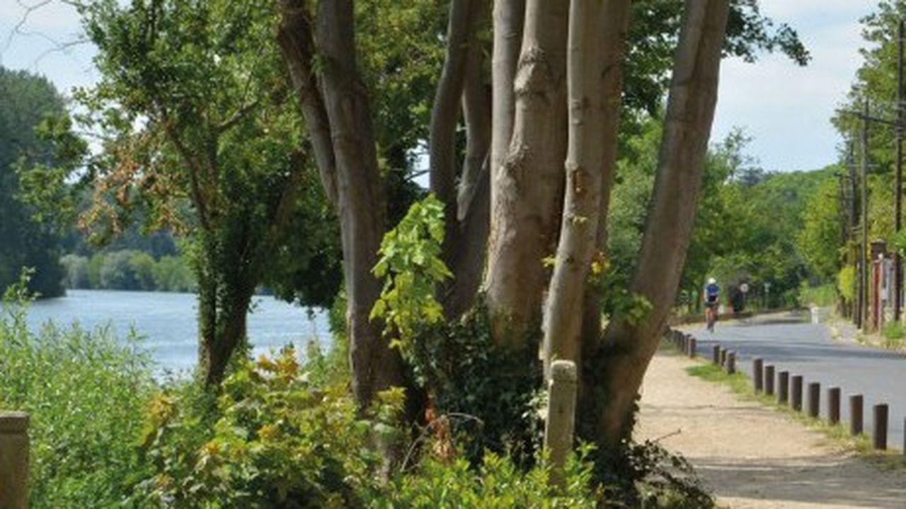 La prochaine étape des travaux aura lieu en 2020 et concernera les quais proches de la Frette-sur-Seine.