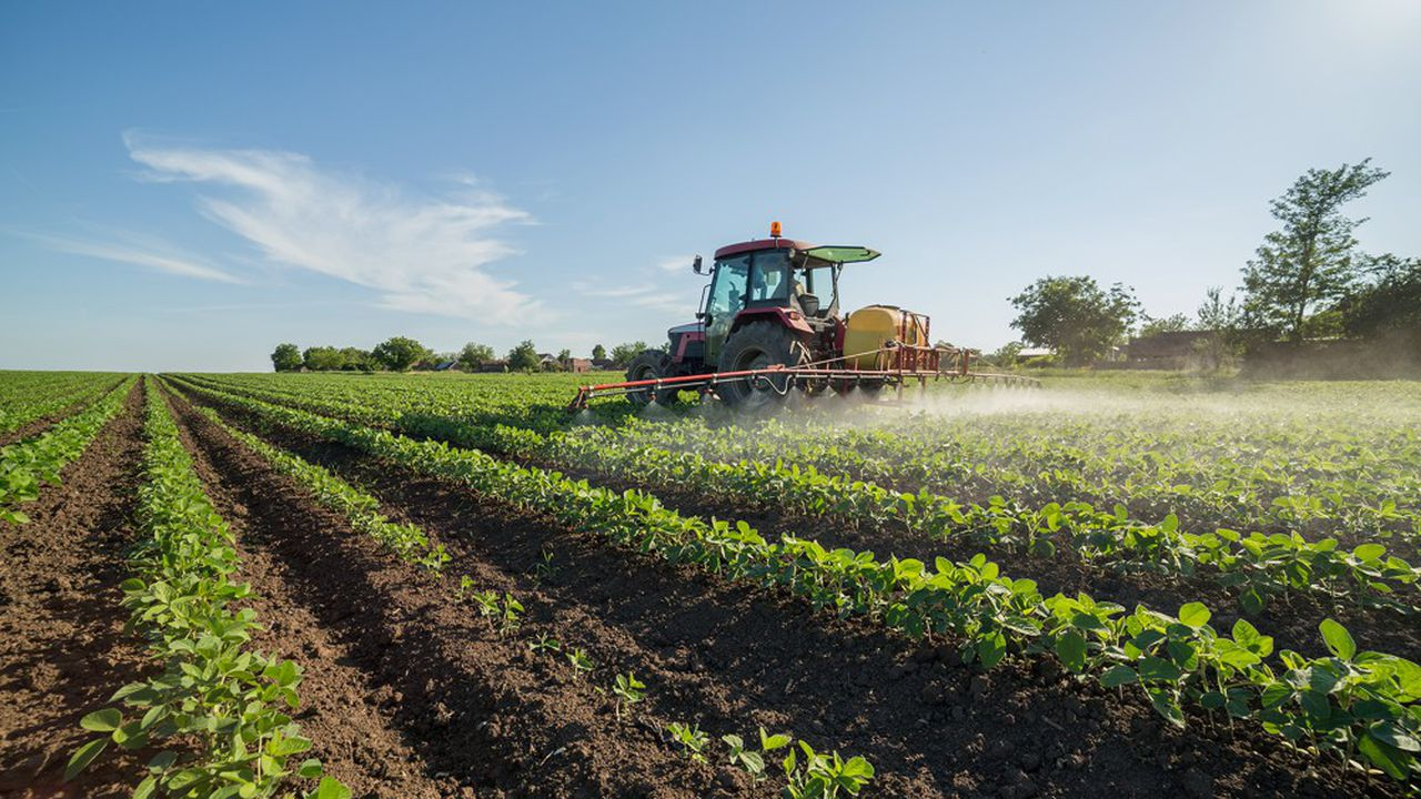 Des arrêtés municipaux pris par 13 maires du Val-de-Marne interdisaient l'usage de produits phytosanitaires sur leurs communes, dont le glyphosate.
