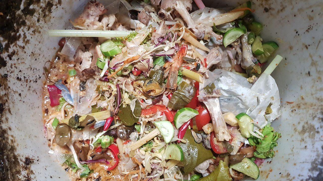 La collecte de déchets organiques