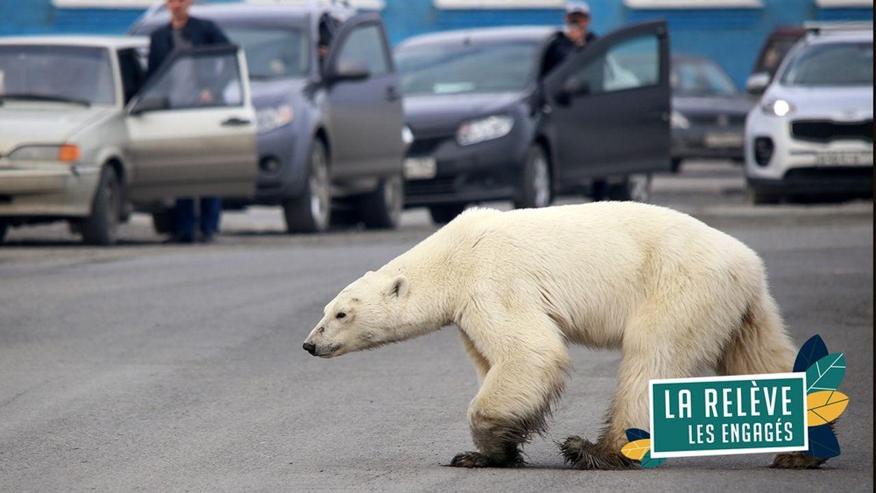 Les objectifs de lutte contre le réchauffement climatique tels que définis lors de la COP21 à Paris n'ont pas été tenus.