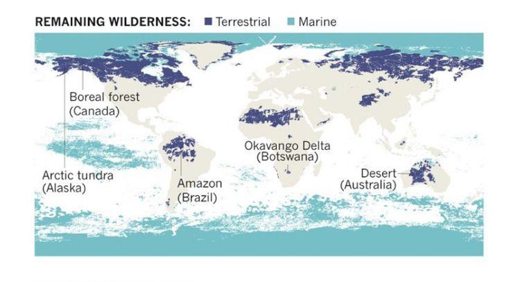Selon une étude parue dans «Nature», il ne reste plus que 23% de surfaces émergées intactes sur Terre (en bleu foncé).
