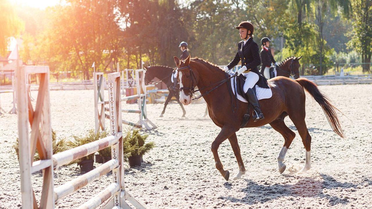 Près d'un million de Français pratiquent l'équitation, seul ou en club.