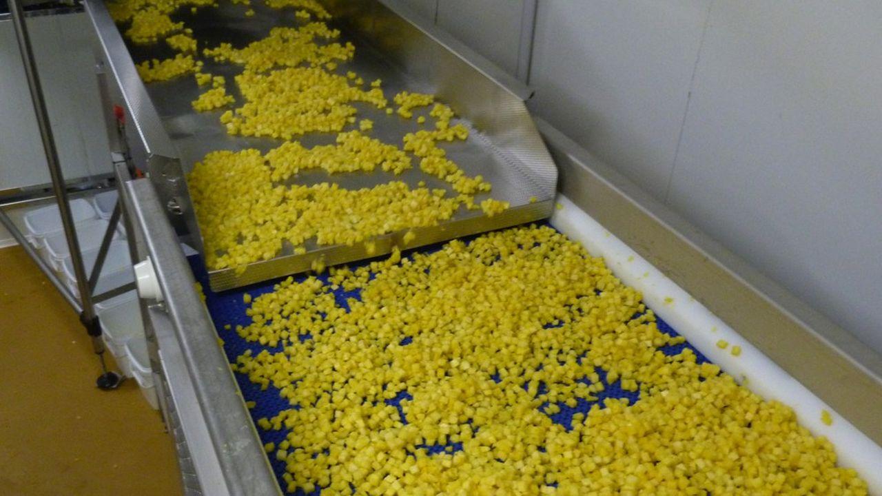 Royal Bourbon Industries va envoyer début 2020 une vingtaine de tonnes de cubes d'ananas conditionnés en sachet de 450 grammes, sous la marque Thiriet.