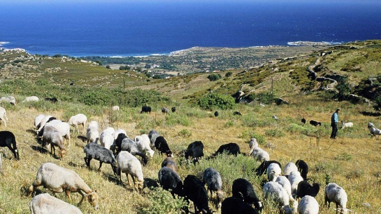 Les zones d'excellence pour la biodiversité se situent dans l'ensemble du domaine méditerranéen, et notamment en Corse (en photo : la région de Balagne).