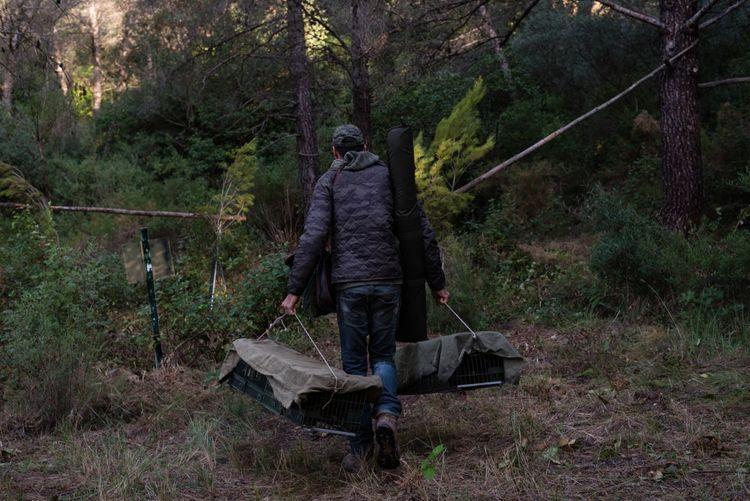 Aux alentours de Marseille, un chasseur transporte ses cages dans lesquelles sont enfermées des grives qui seront utilisées pour la chasse à la glu...