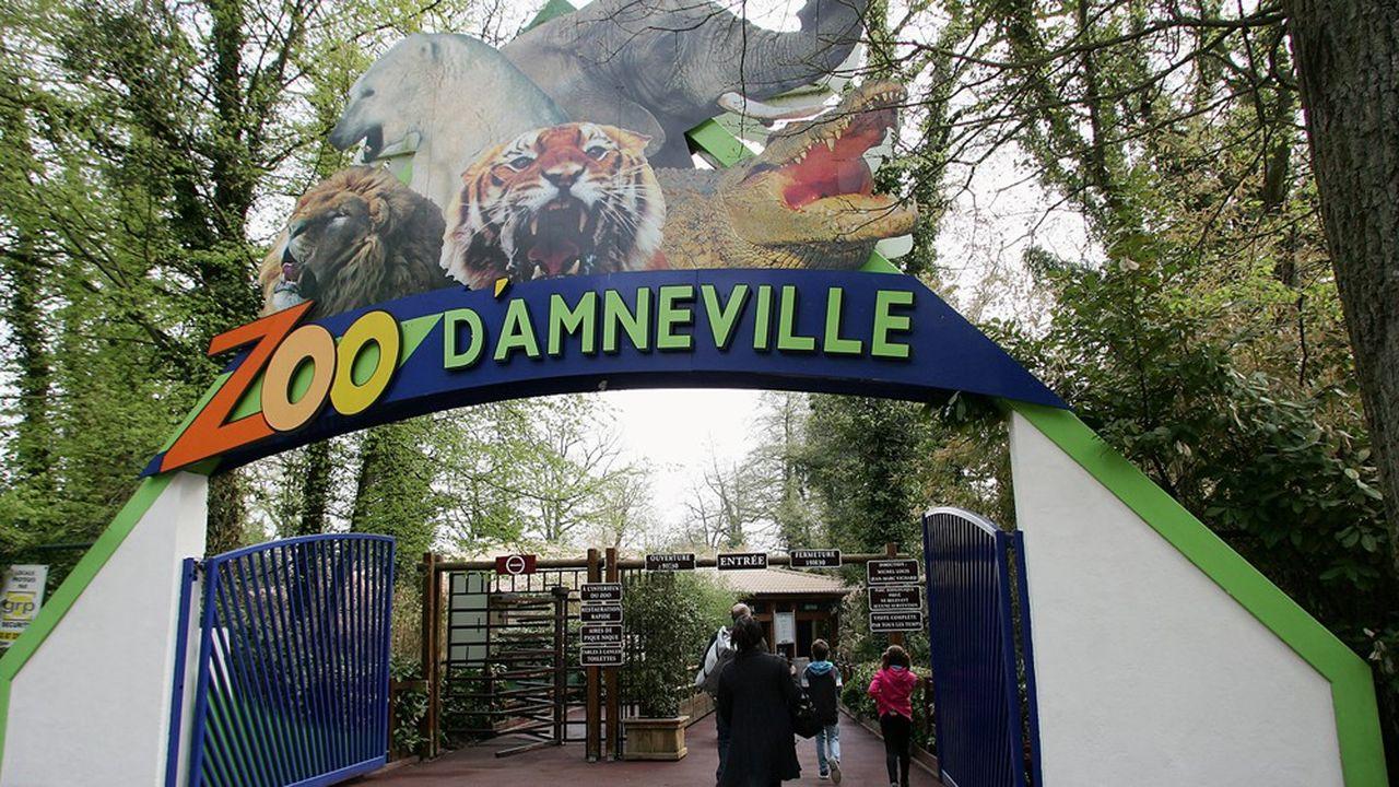 Parmi les investissements hasardeux du zoo, une montagne créée de toute pièce pour abriter un spectacle de tigres dénommé Tiger World a creusé la dette de 20 millions supplémentaires.