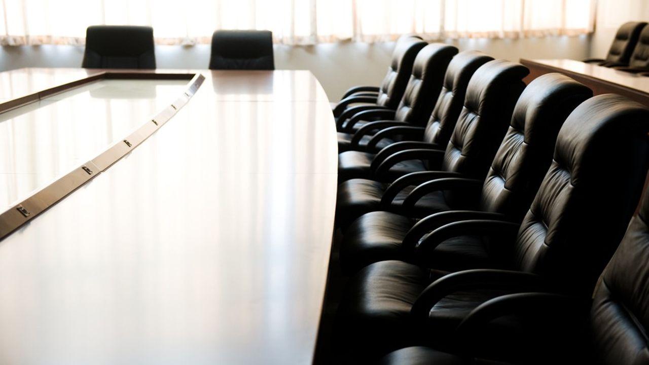 Le HCGE sera soucieux de parvenir à une représentation équilibrée des femmes et des hommes dans les comités de direction.