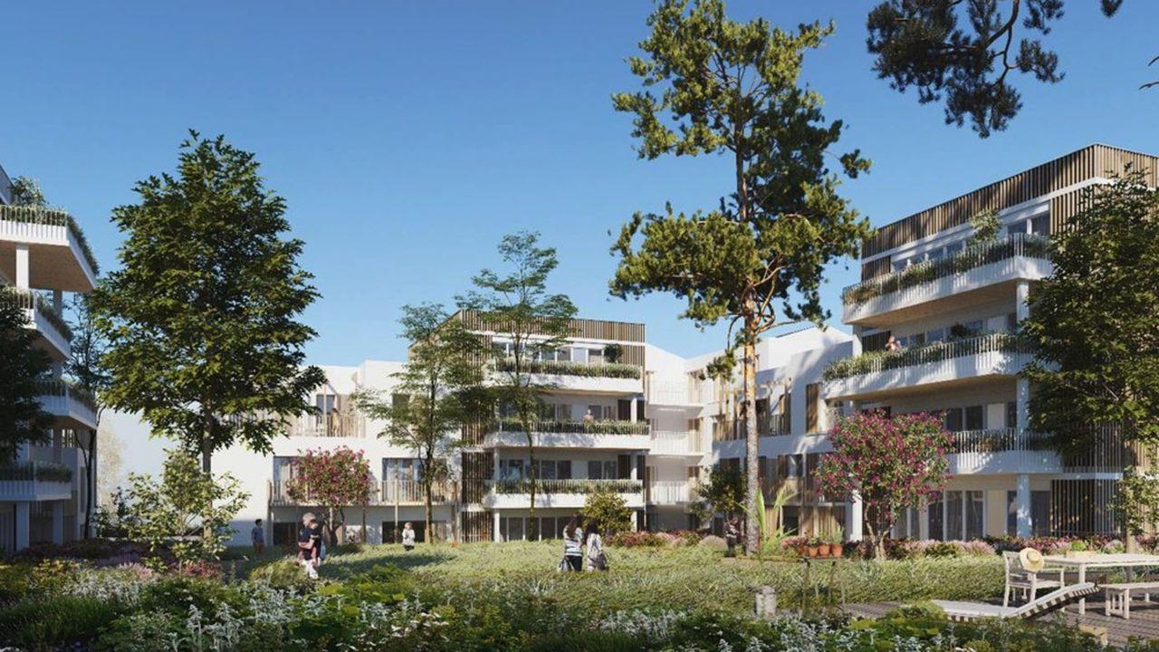 Woodeum réalisera une première phase de 72 logements en bois massif.