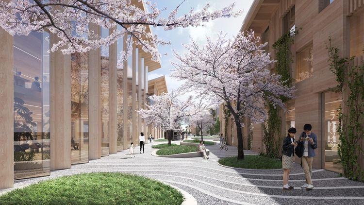 Toyota tamén plans para decorar a Cité de vexetación local grazas a un Cultura hidropónica'agrémenter la cité d'une végétation locale grâce à une culture hydroponique