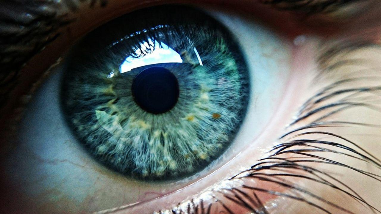 Dans un oeil sain, ce sont les photorécepteurs, ces cellules sensibles à la lumière tapissant la rétine, qui activent les neurones rétiniens et permettent au cerveau de construire une image. Les implants rétiniens pallient les photorécepteurs défaillants à l'aide d'électrodes miniatures.