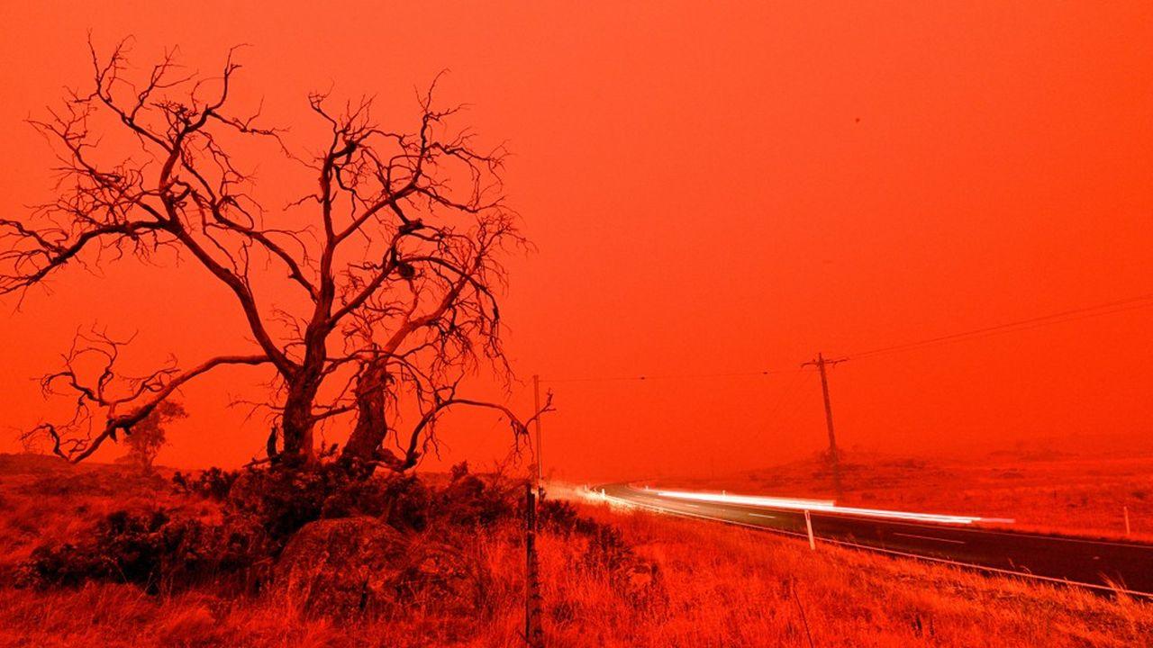 Environ 80.000km2 sont partis en fumée en Australie.