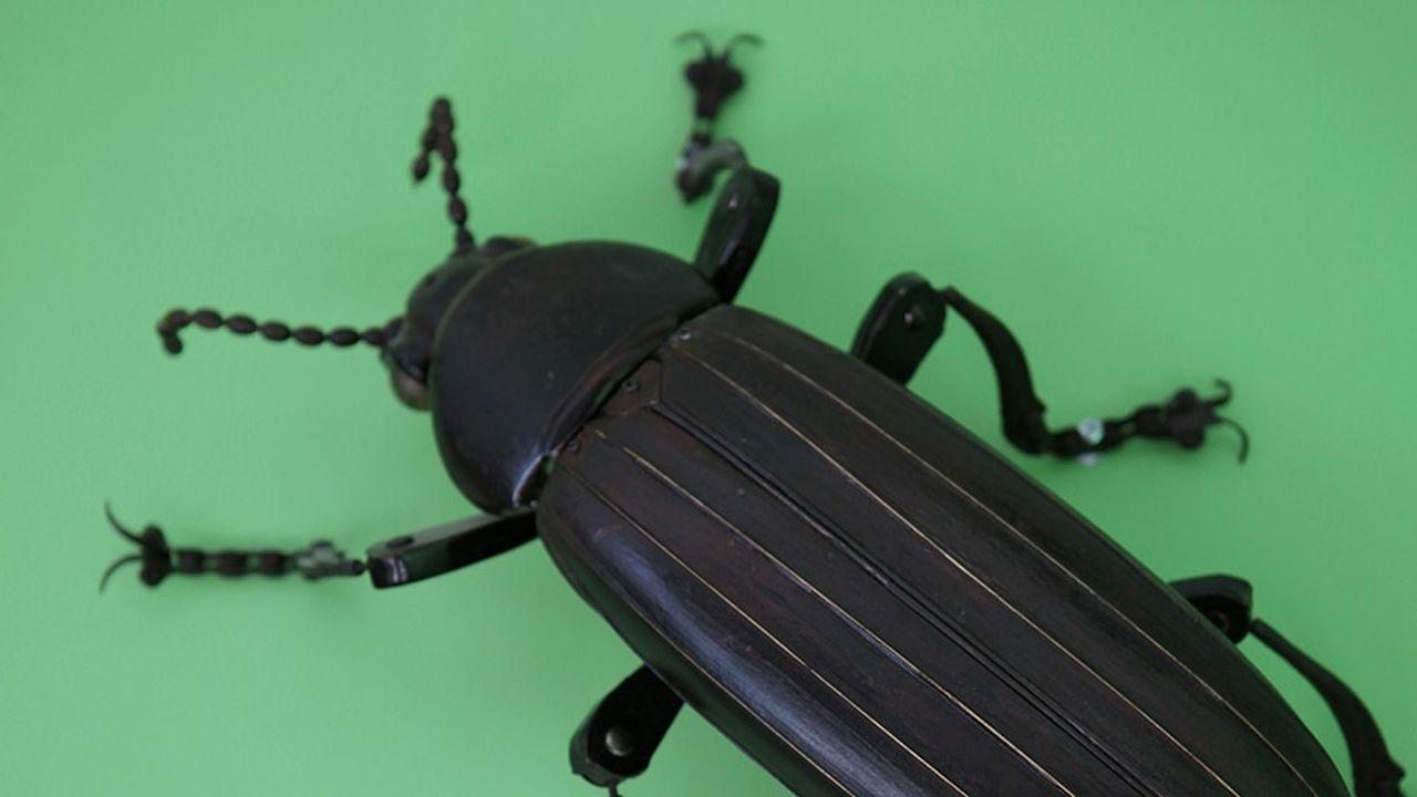 Dans l'entrée de l'usine Ynsect à Damparis (Jura), on trouve une sculpture scarabée d'Edouard Martinet.