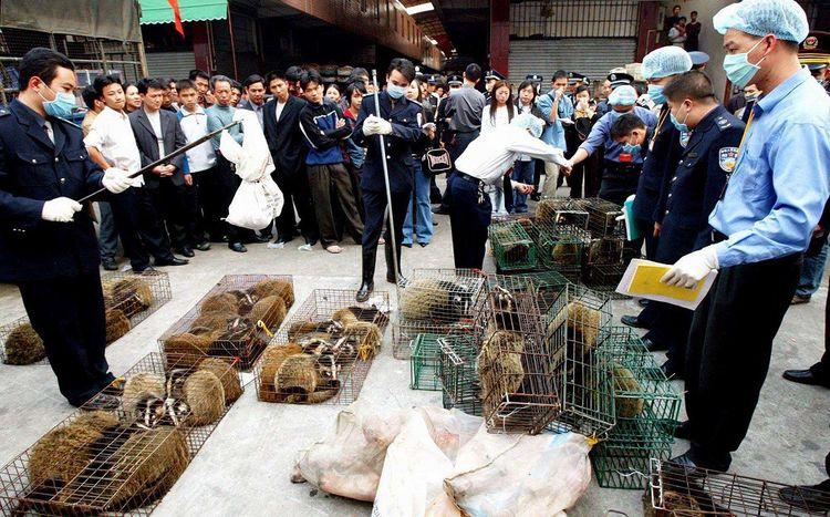 ARCHIVE de janvier2004 - Des officiers de police ont confisqué des cages contenant des civettes au marché de Guangzhou.