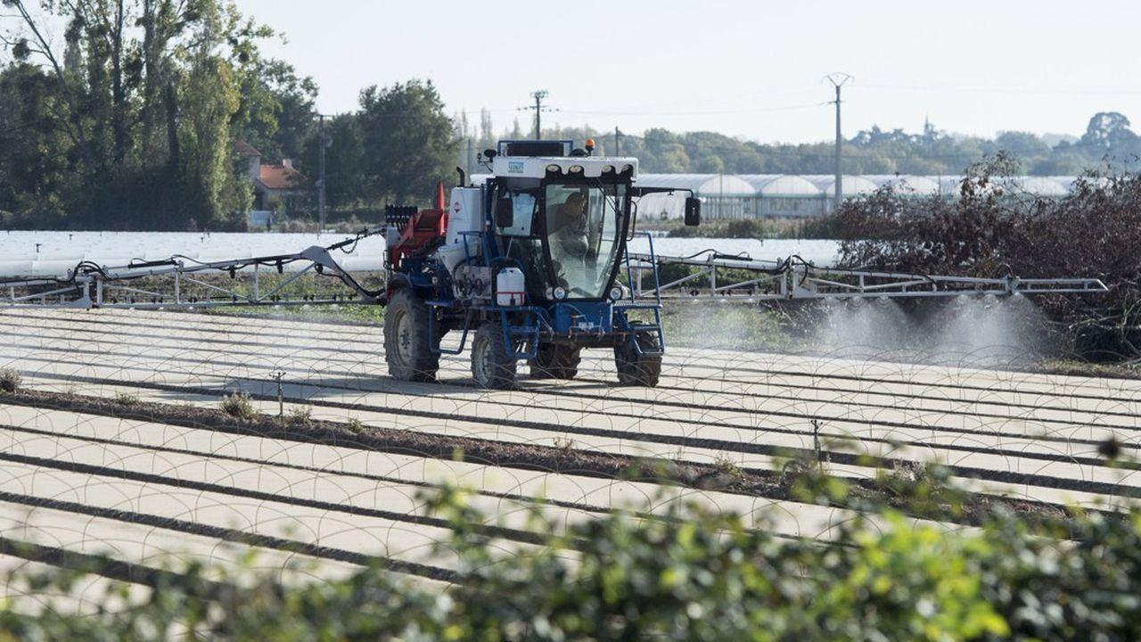 La France interdit l'export de pesticides prohibés en Europe.