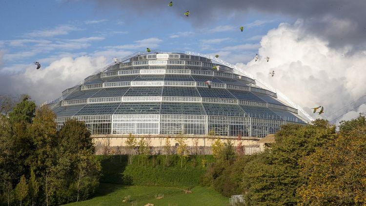 La structure du dôme du zoo de Beauval a été dessinée par l'architecte Daniel Boitte.