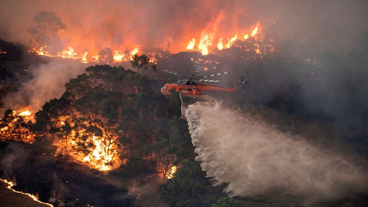 Quelque 15millions d'Australiens ont été affectés de manière indirecte par ces feux.