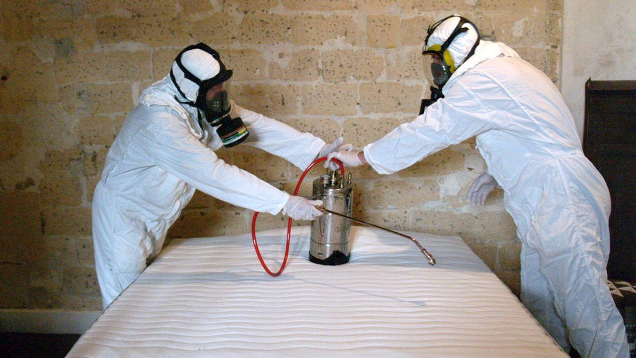 Des professionnels interviennent pour éradiquer les punaises de lit chez des particuliers.