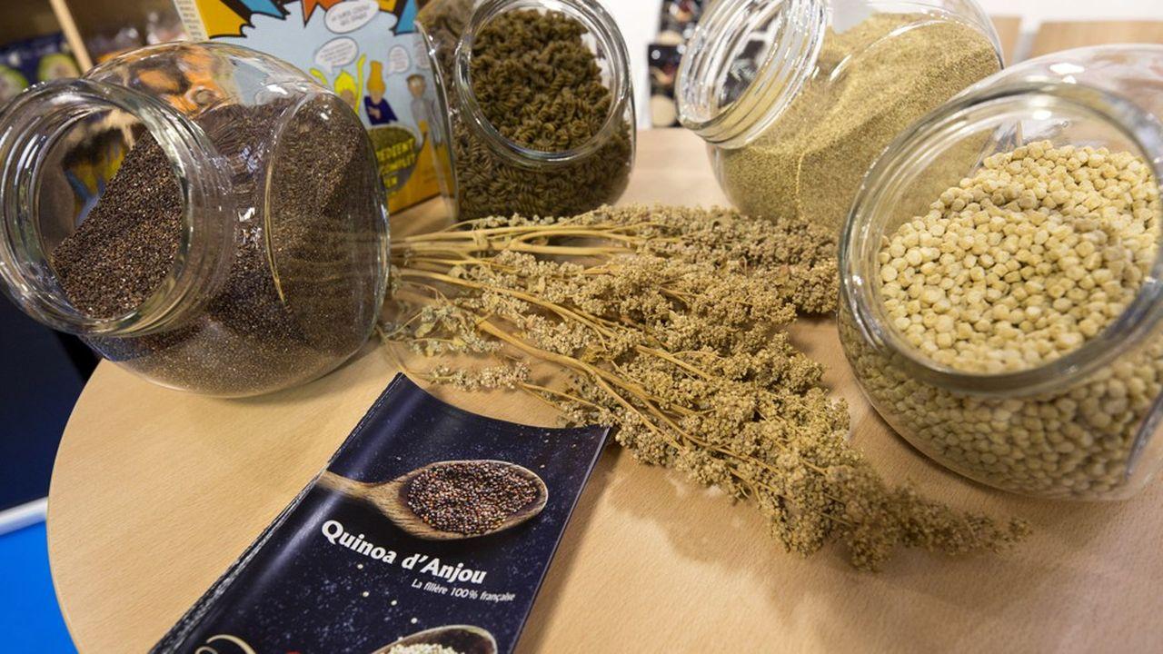 Le Quinoa d'Anjou travaille avec des agriculteurs locaux .