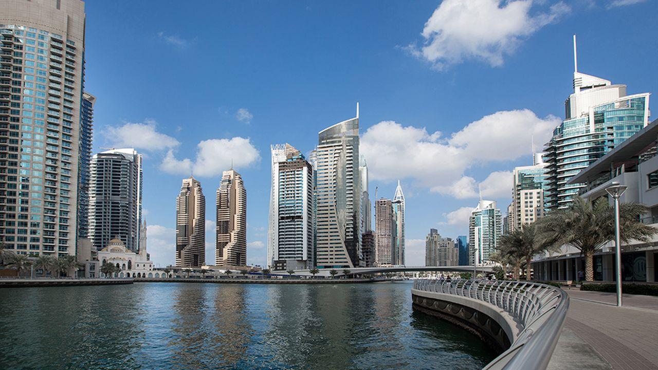 Malgré la chute des cours du pétrole, les Emirats arabes unis comptent encore des secteurs dynamiques pour les expatriés.