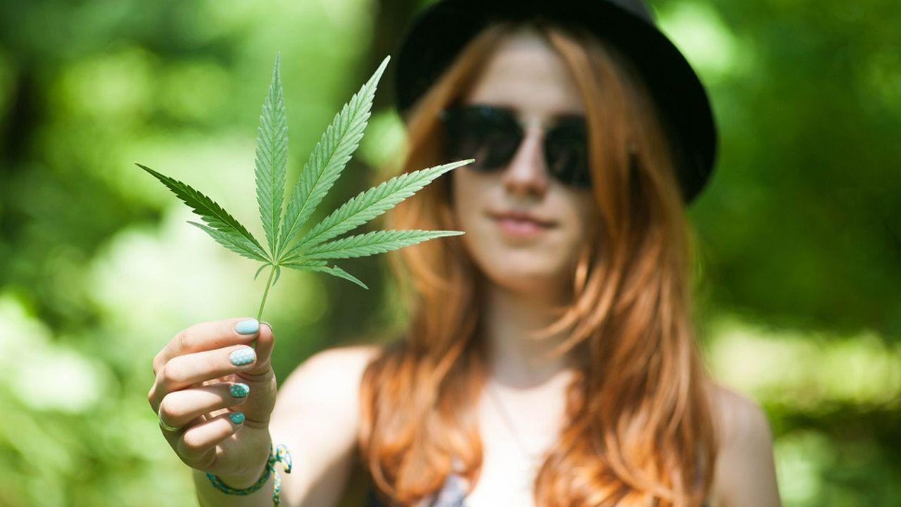 7845_1490886961_cannabis.jpg