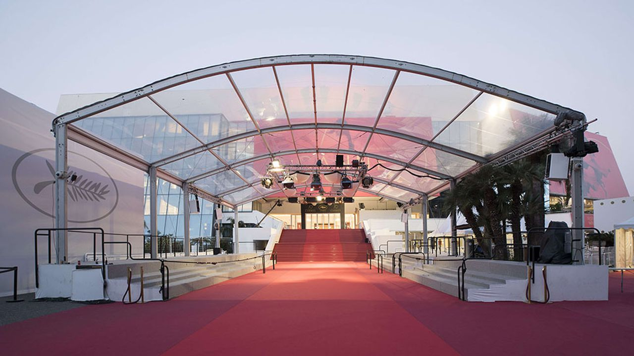 9848_1507911701_cannes-tapis-rouge.jpg