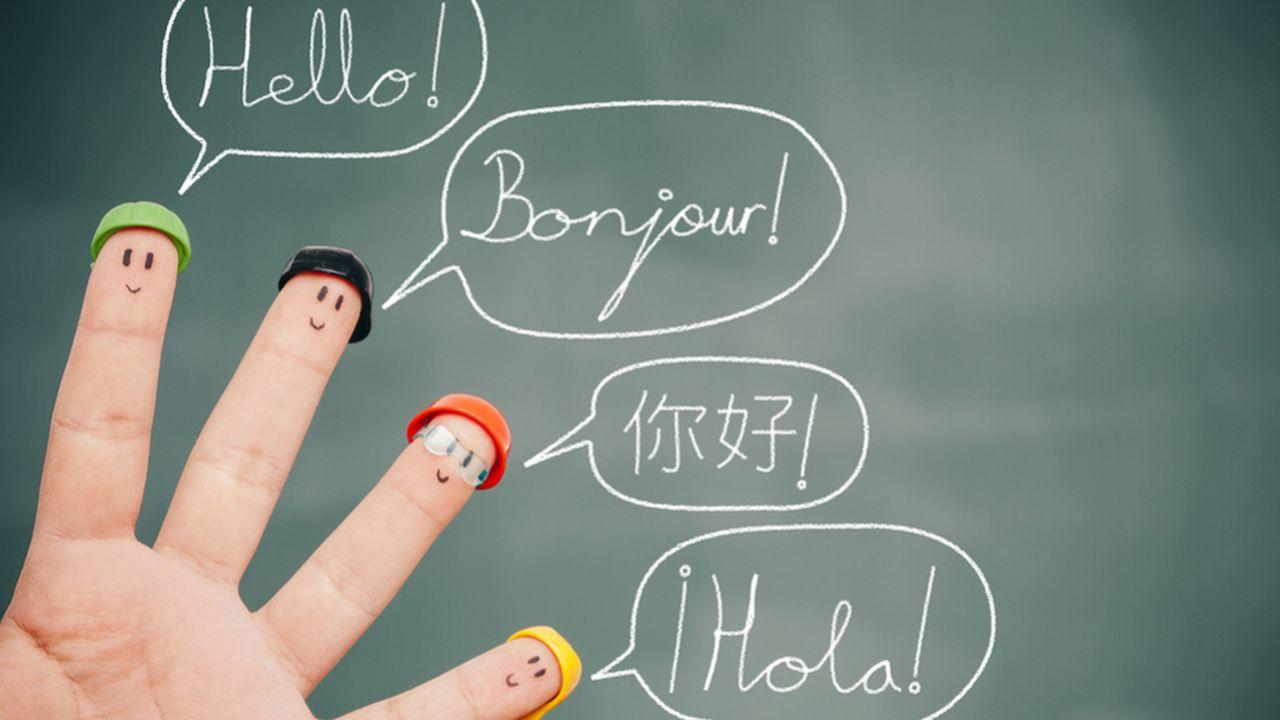 10454_1513610224_langues.jpg