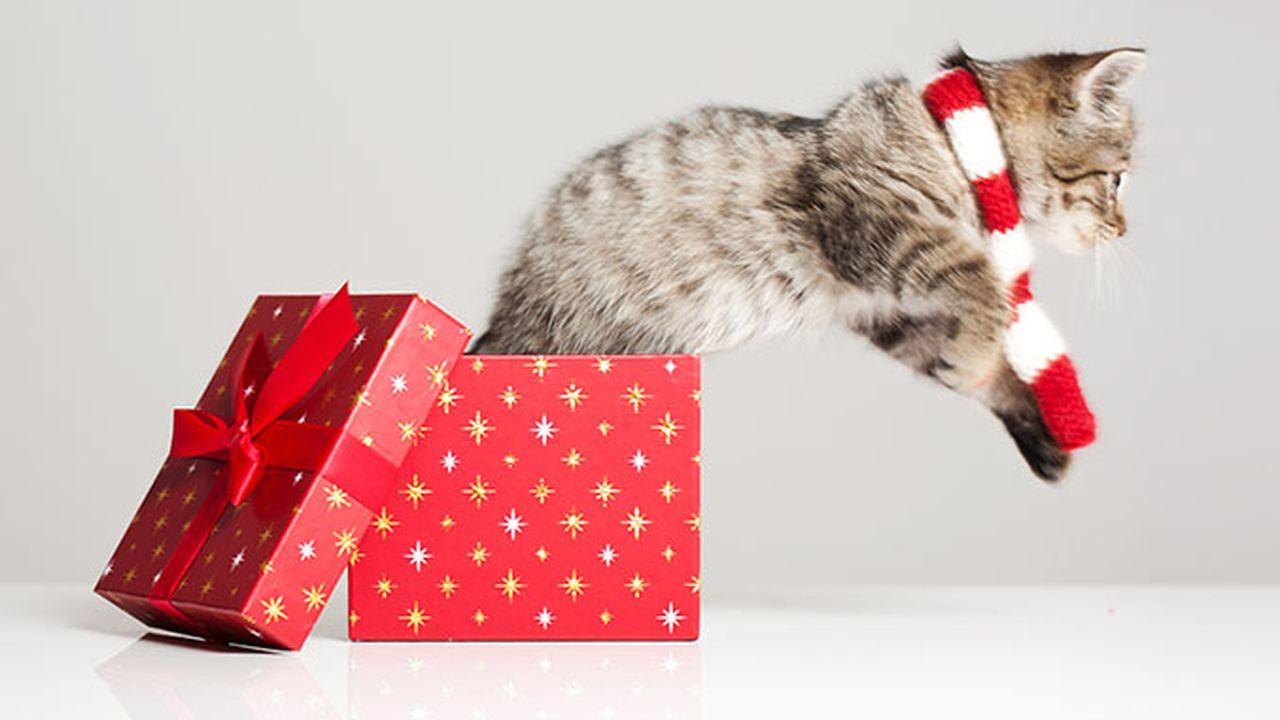 3315_1449499782_cadeaux-noel-start.jpg