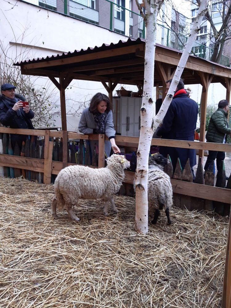 Agnès Buzyn, lors de son petit crochet par la petite ferme de la Goutte d'Or pour des photos avec les moutons et les poules.