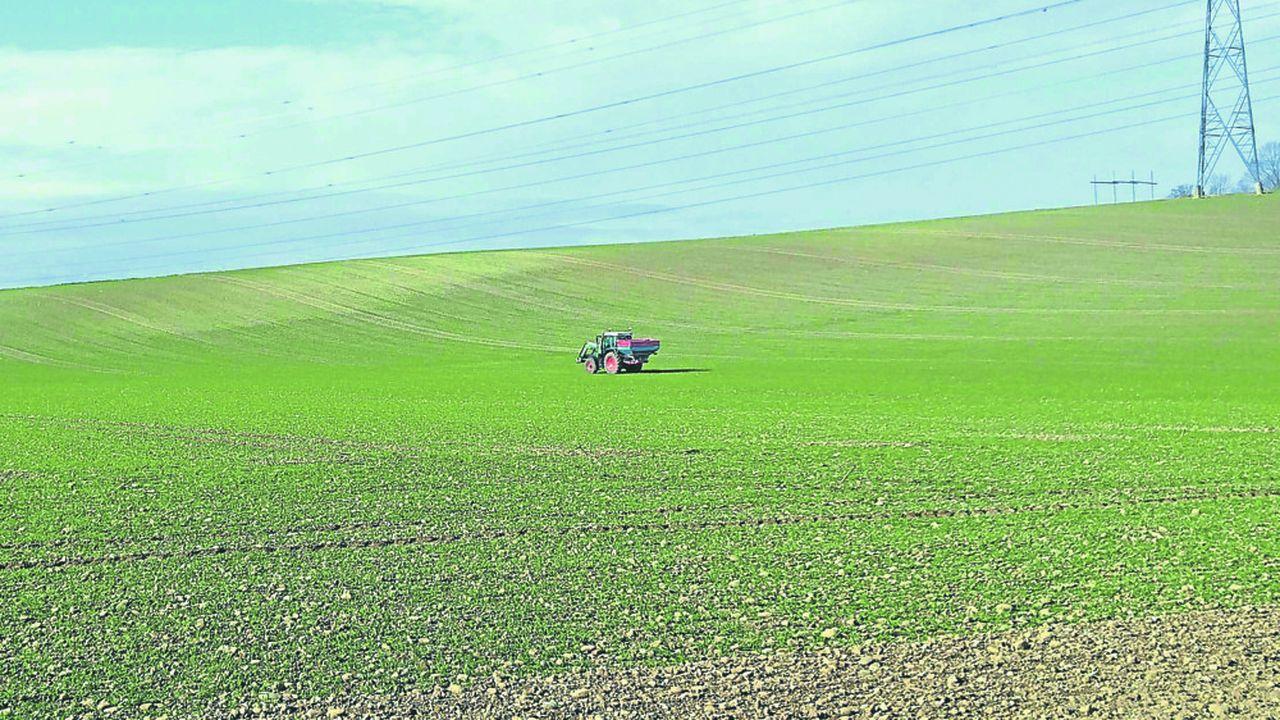 Les agriculteurs s'apprêtent à faire les semis de printemps avec un enjeu particulier cette année. Une grande partie des semis d'hiver ont été gâchés par une météo déplorable, qui va obliger à replanter une partie du blé et également une partie de l'orge.